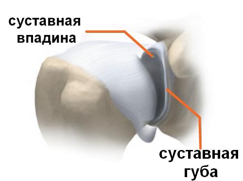 суставная капсула плечевого сустава лечение