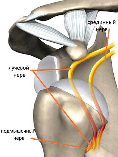 как вставить плечевой сустав видео