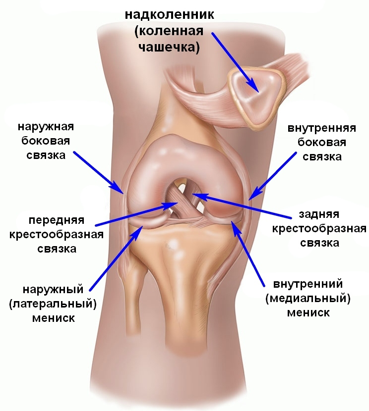 Виды костылей при переломе ноги